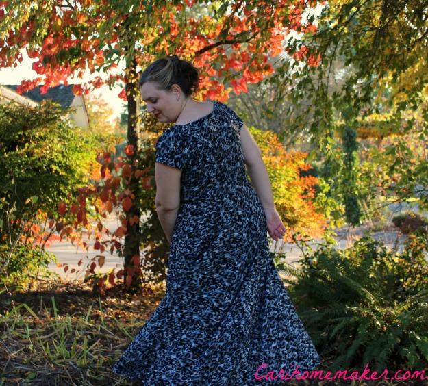 Leopard Anna 7